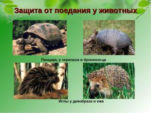 Защита от поедания у животных