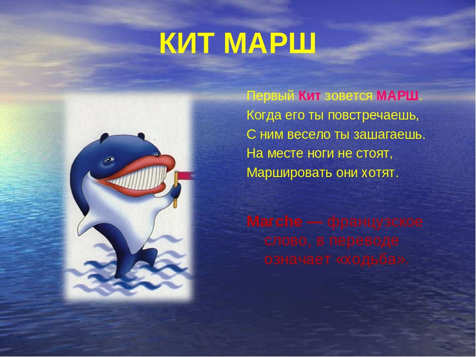 картинка как кит марширует важно правильно