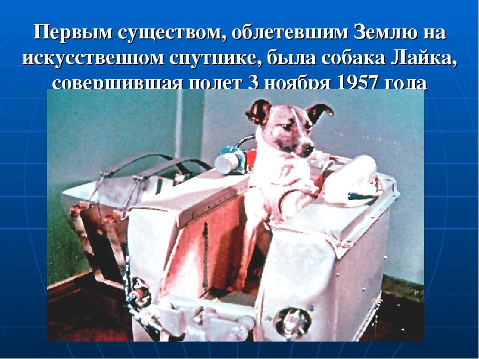 Первым существом, облетевшим Землю на искусственном спутнике, была собака Лай...