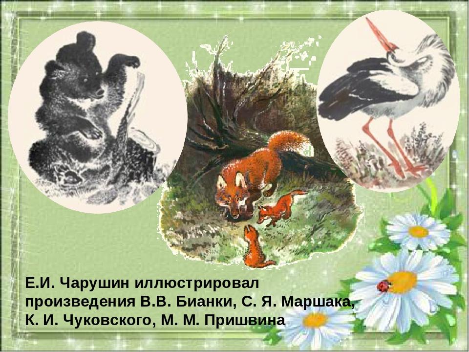 Е.И. Чарушин иллюстрировал произведения В.В. Бианки, С. Я. Маршака, К. И. Чук...