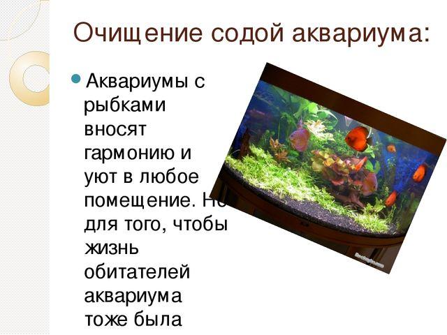 Очищение содой аквариума: Аквариумы с рыбками вносят гармонию и уют в любое п...
