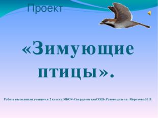 Проект «Зимующие птицы». Работу выполнили учащиеся 2 класса МБОУ«Свердловская