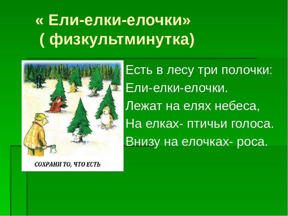 « Ели-елки-елочки» ( физкультминутка) Есть в лесу три полочки: Ели-елки-елоч...