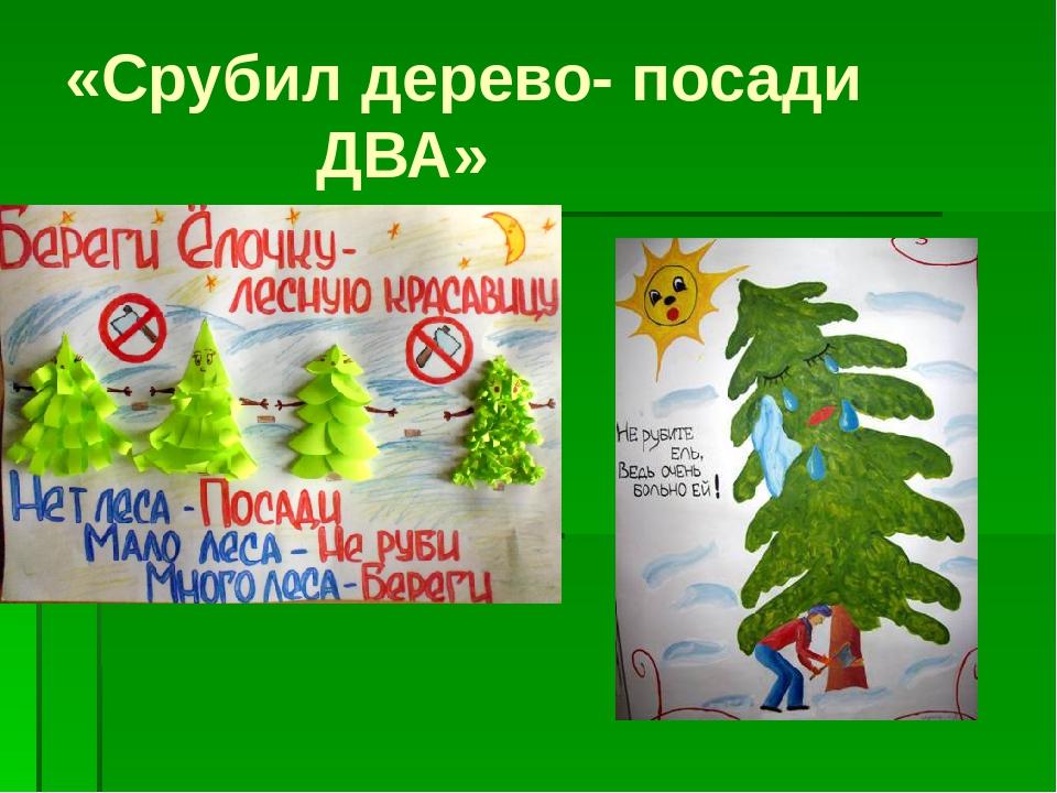 «Срубил дерево- посади ДВА»