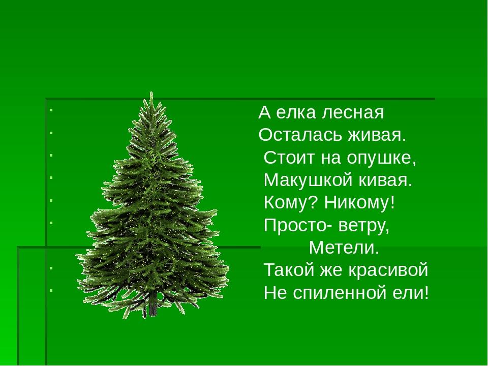 картинкой виде картинки защита зеленые елочки просмотра, которого