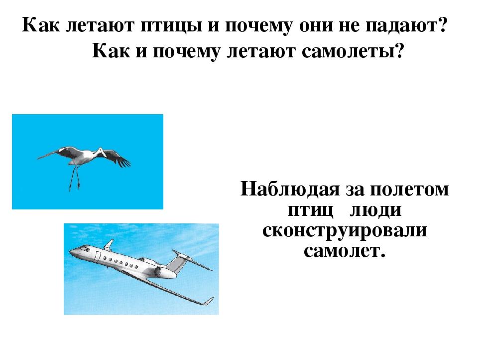 Почему самолет летит и не падает