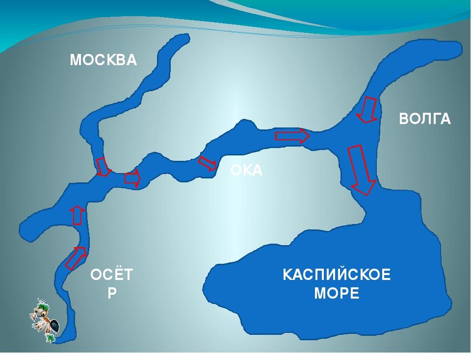 Куда течет река волга схема фото 922