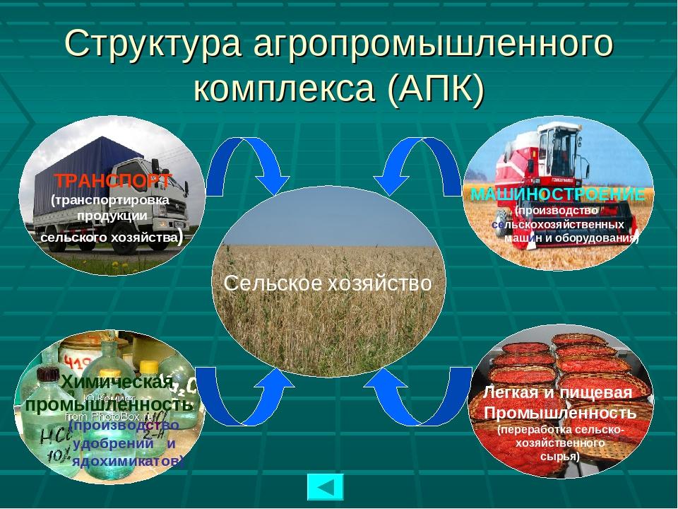 Структура агропромышленного комплекса (АПК) Сельское хозяйство ТРАНСПОРТ (тра...