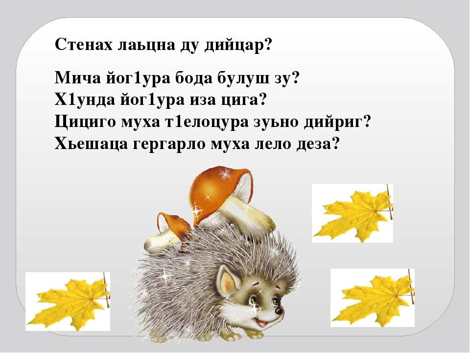 изложени по чеченскому языку г1алара хьаша