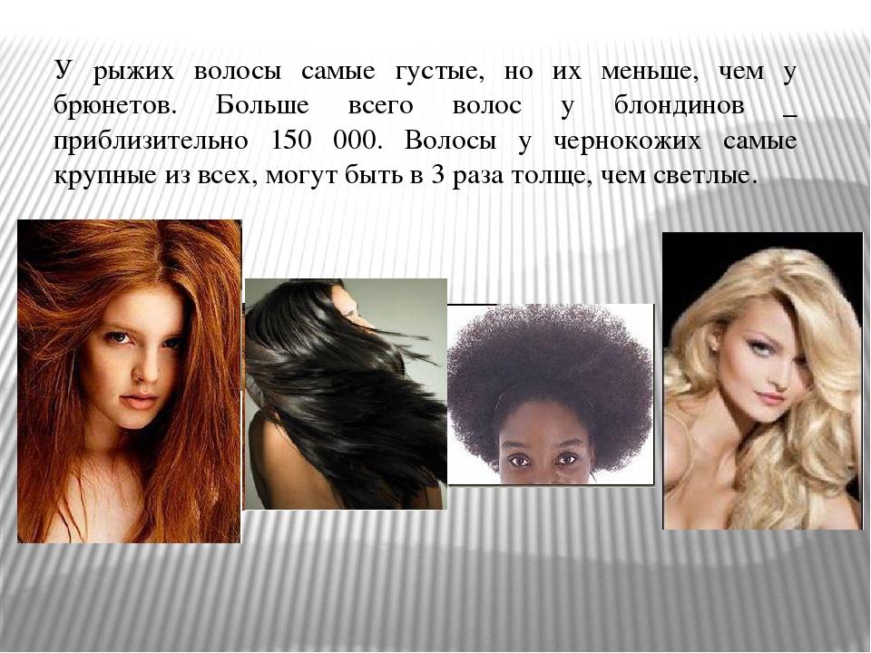 У рыжих волосы самые густые, но их меньше, чем у брюнетов. Больше всего волос...