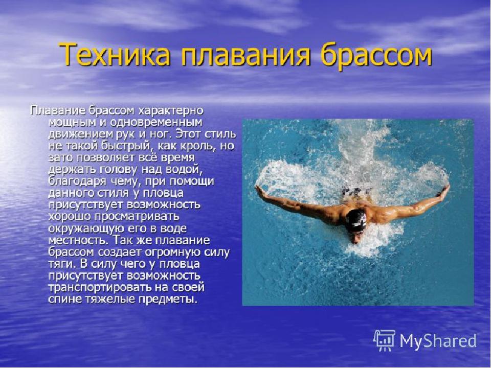 Стили плавания фото и описание под