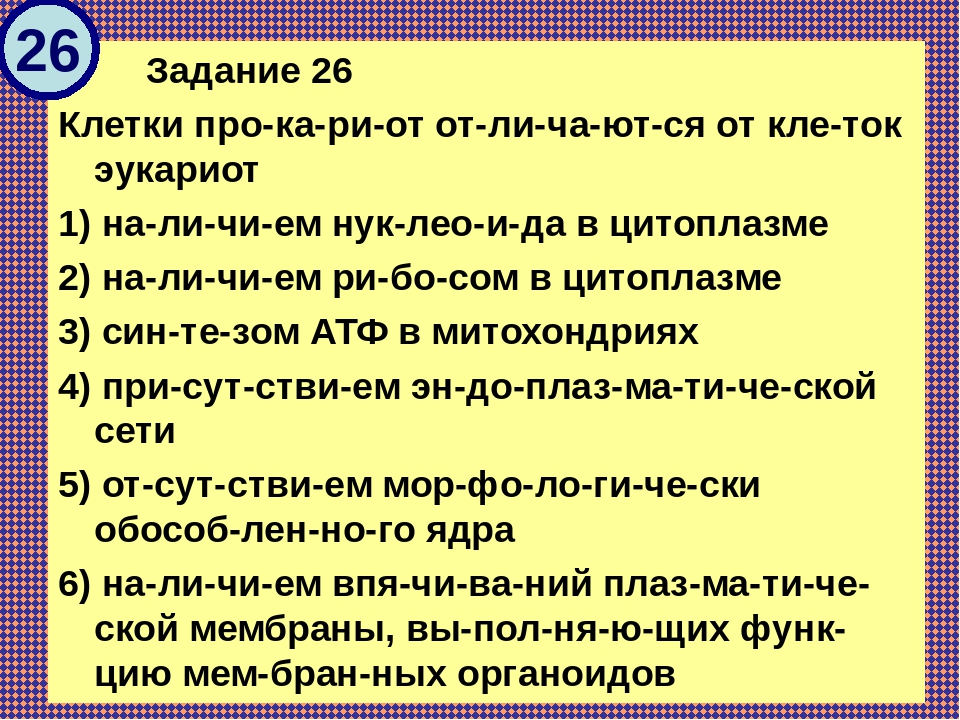Задание 26 Клетки прокариот отличаются от клеток эукариот 1) налич...