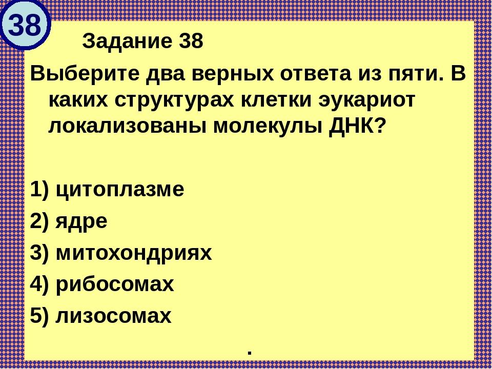 Задание 38 Выберите два верных ответа из пяти. В каких структурах клетки эу...