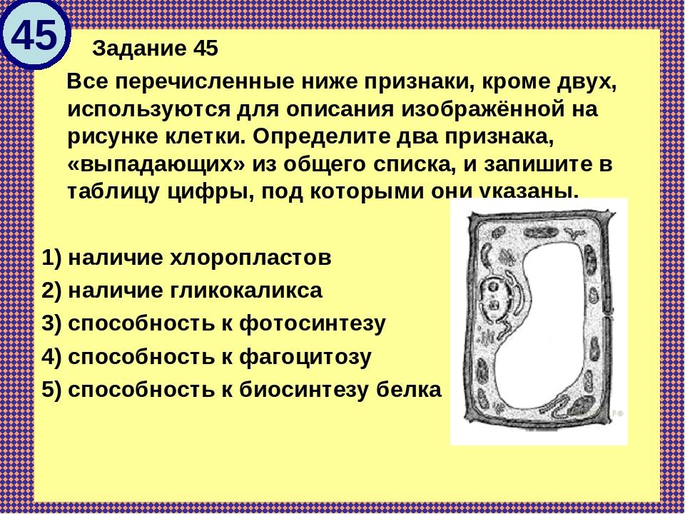 Задание 45 Все перечисленные ниже признаки, кроме двух, используются для оп...