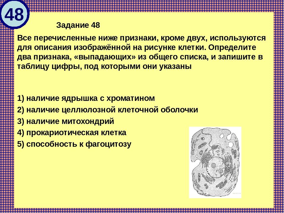 Задание 48 Все перечисленные ниже признаки, кроме двух, используются для оп...