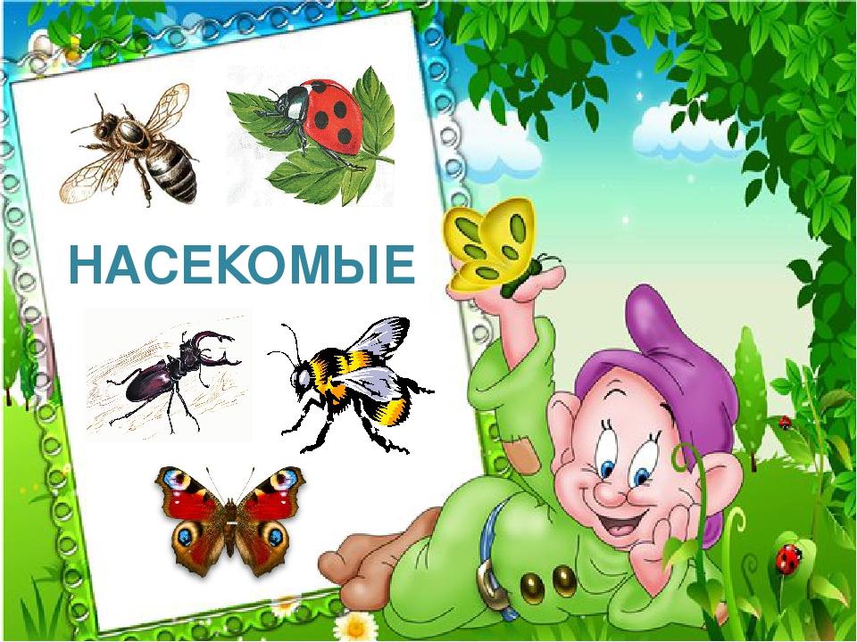 Добрым утром, картинки с надписями насекомых