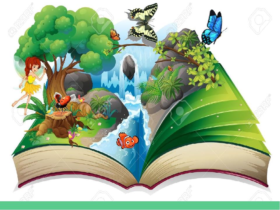 Картинки природы жалобная книга