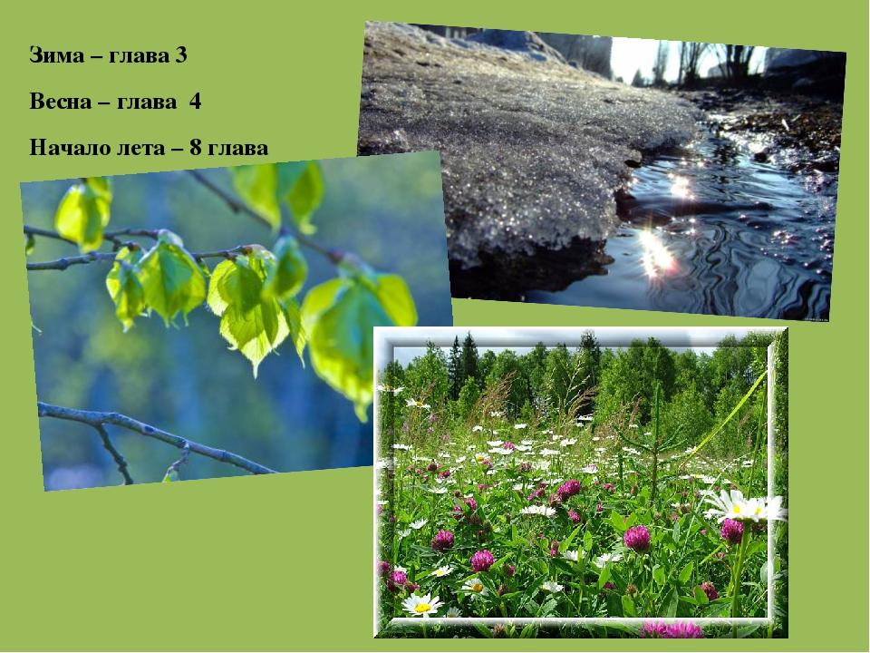 Зима – глава 3 Весна – глава 4 Начало лета – 8 глава