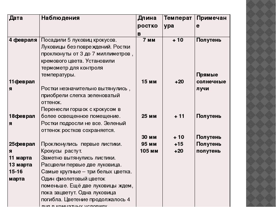 Дата Наблюдения Длина ростков Температура Примечане 4февраля 11февраля 18февр...