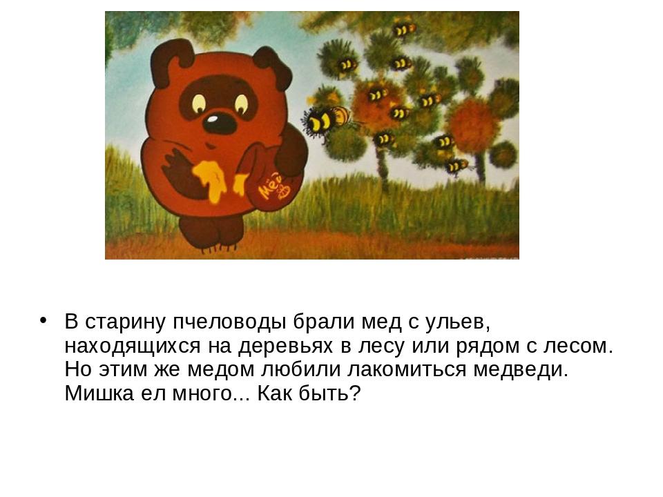В старину пчеловоды брали мед с ульев, находящихся на деревьях в лесу или ря...