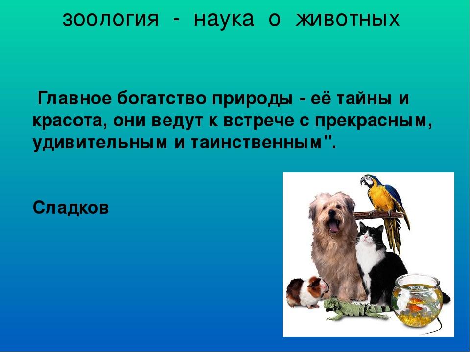 зоология - наука о животных Главное богатство природы - её тайны и красота,...
