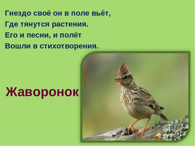 Гнездо своё он в поле вьёт, Где тянутся растения. Его и песни, и полёт Вошли...