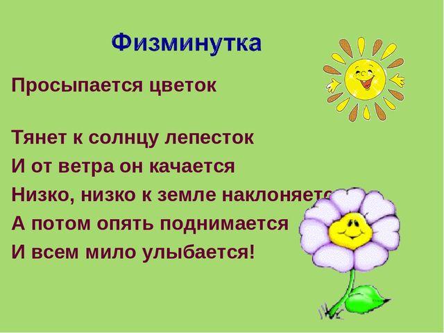 Просыпается цветок Тянет к солнцу лепесток И от ветра он качается Низко, ни...