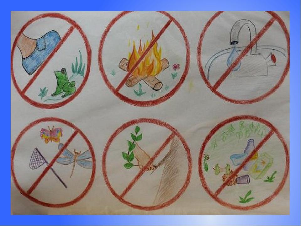 Знаки береги природу картинки для детей, фотографии детей школе