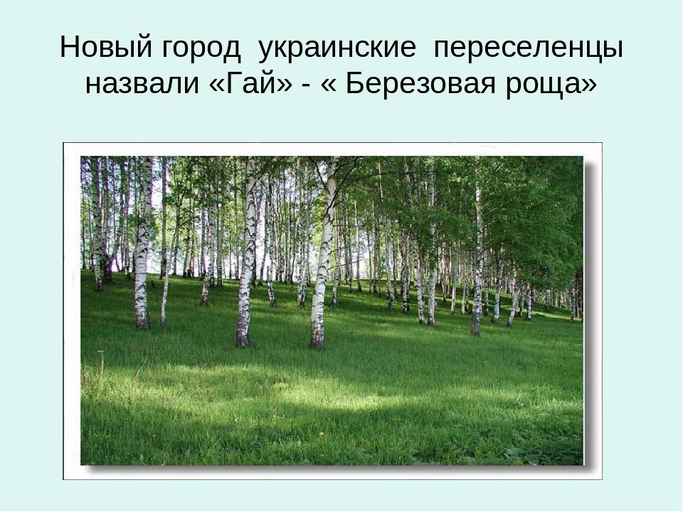 Новый город украинские переселенцы назвали «Гай» - « Березовая роща»