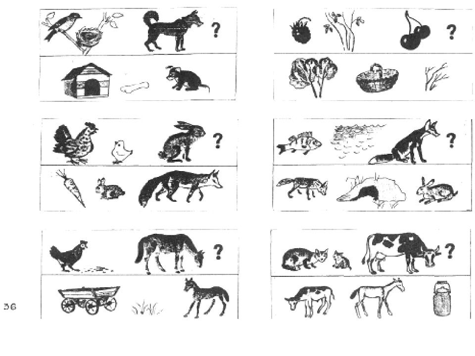 Тест по картинкам животные