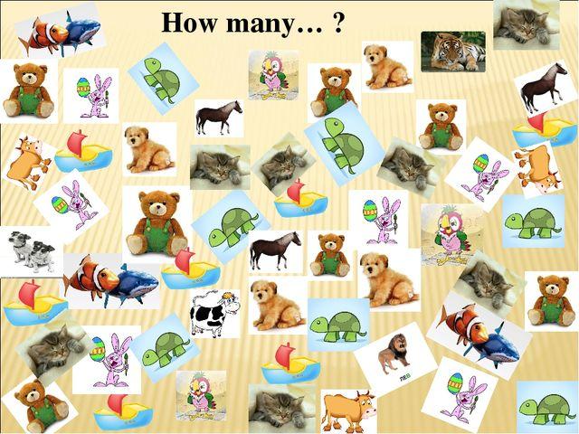 How many… ?