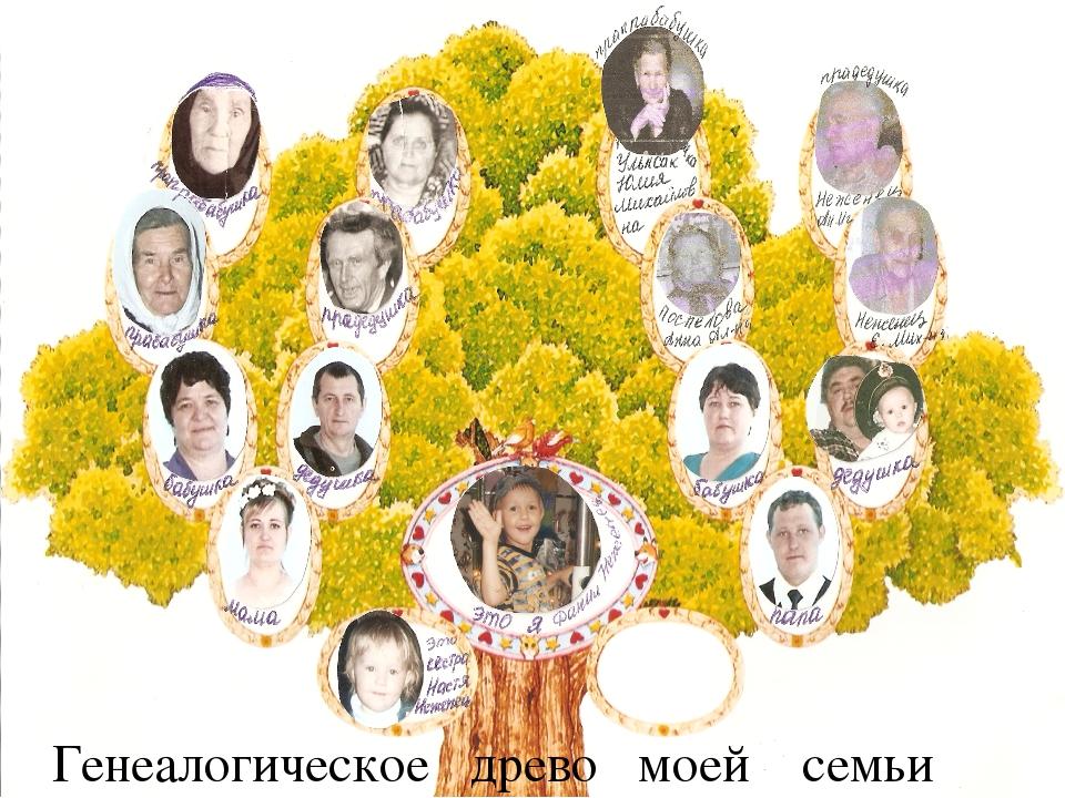 генеалогическое древо семьи в иркутске этих тканей прекрасно