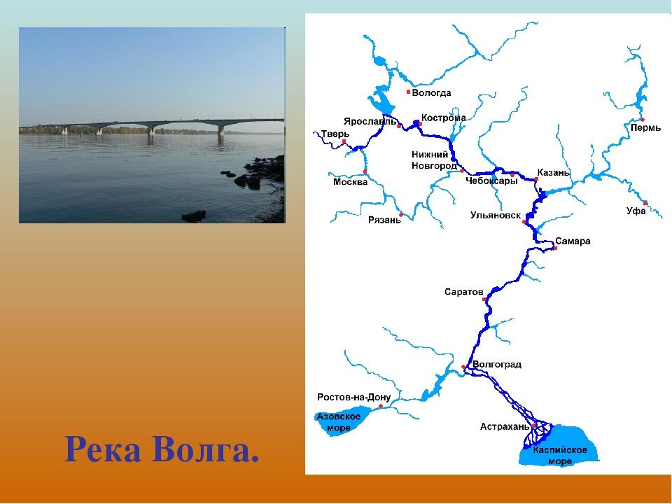 Река волга на карте россии исток и устье