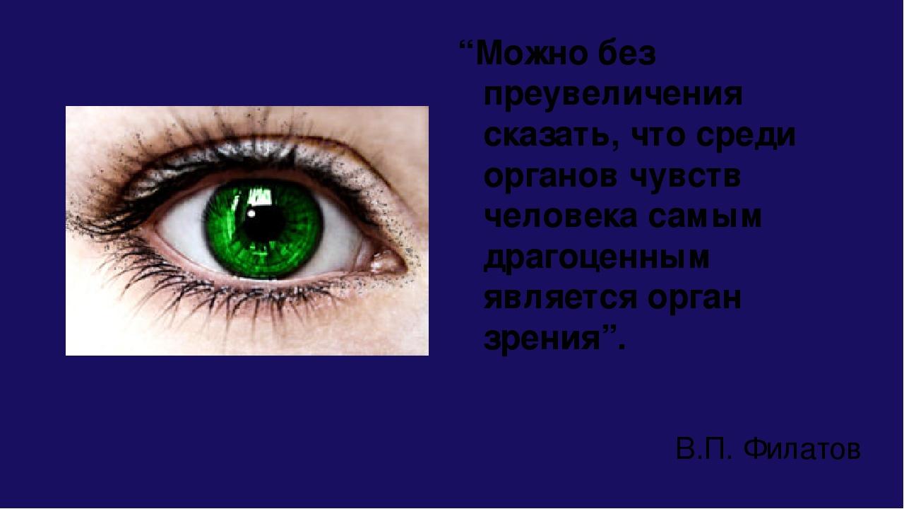 """""""Можно без преувеличения сказать, что среди органов чувств человека самым дра..."""