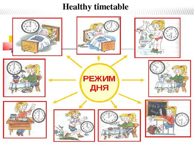 Healthy timetable Healthy timetable