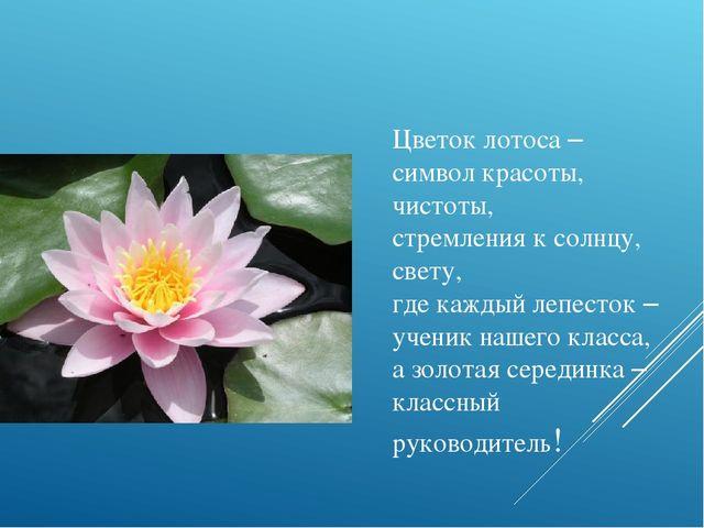 Что символизирует цветок лотос