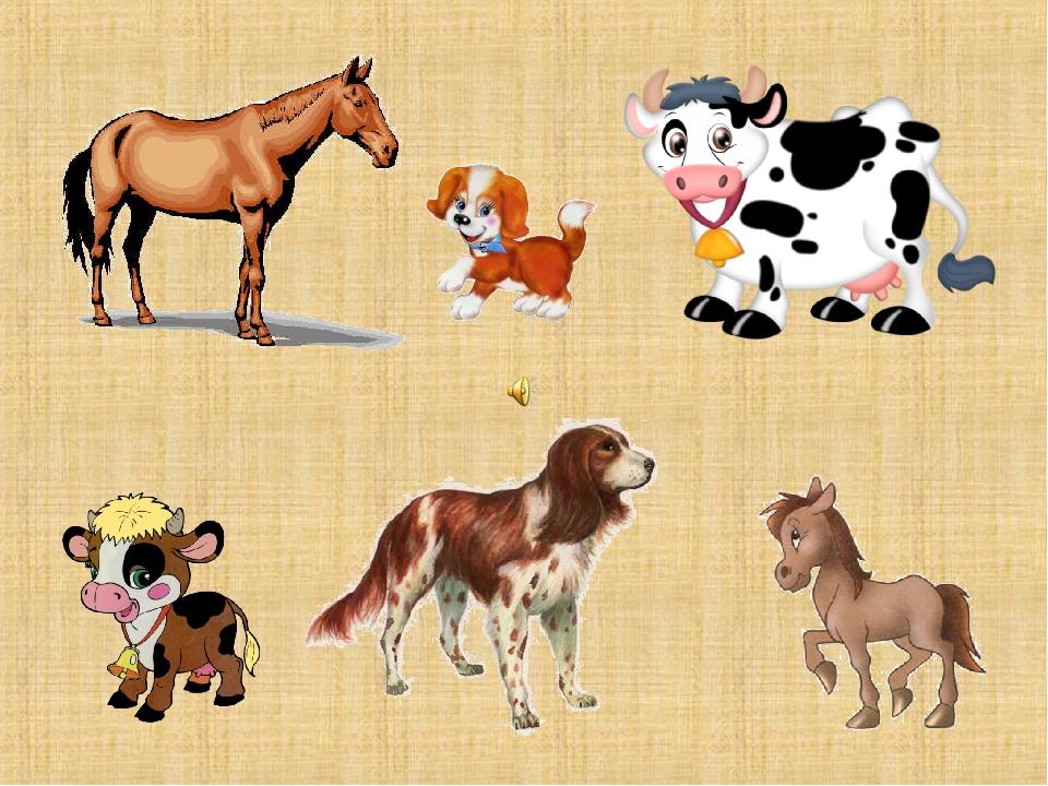 Домашние животные с детенышами картинки для детского сада