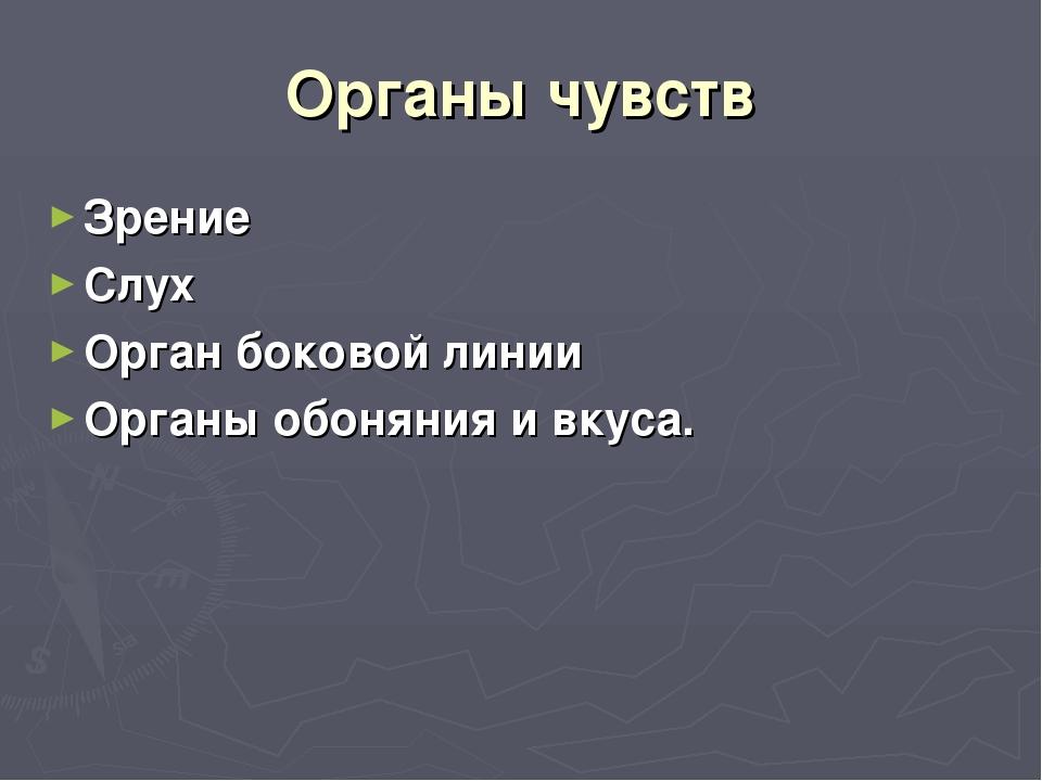Органы чувств Зрение Слух Орган боковой линии Органы обоняния и вкуса.