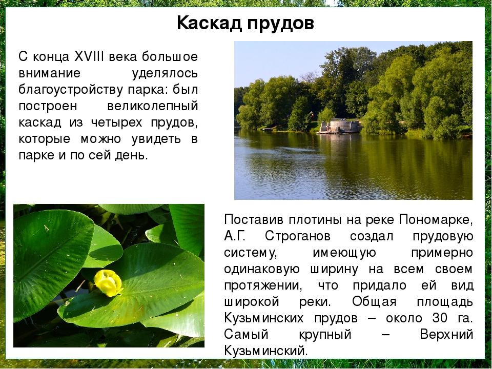 Каскад прудов С конца XVIII века большое внимание уделялось благоустройству п...
