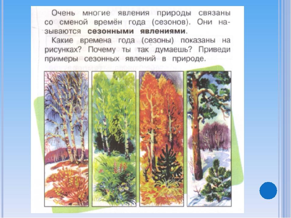 Сезонные явления картинки