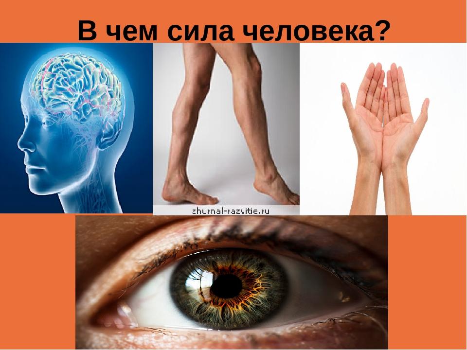В чем сила человека?