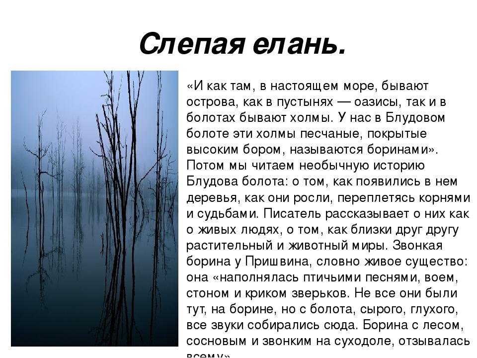 Слепая елань. «И как там, в настоящем море, бывают острова, как в пустынях —...