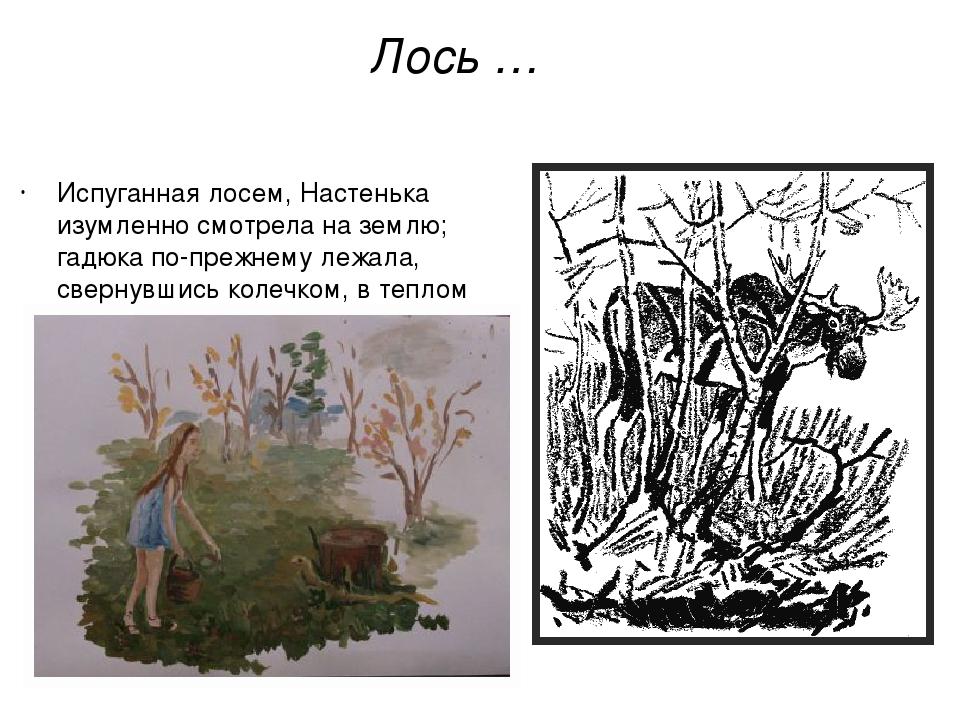 Лось … Испуганная лосем, Настенька изумленно смотрела на землю; гадюка по-пре...