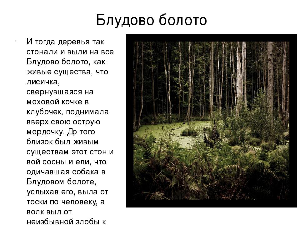 Блудово болото И тогда деревья так стонали и выли на все Блудово болото, как...