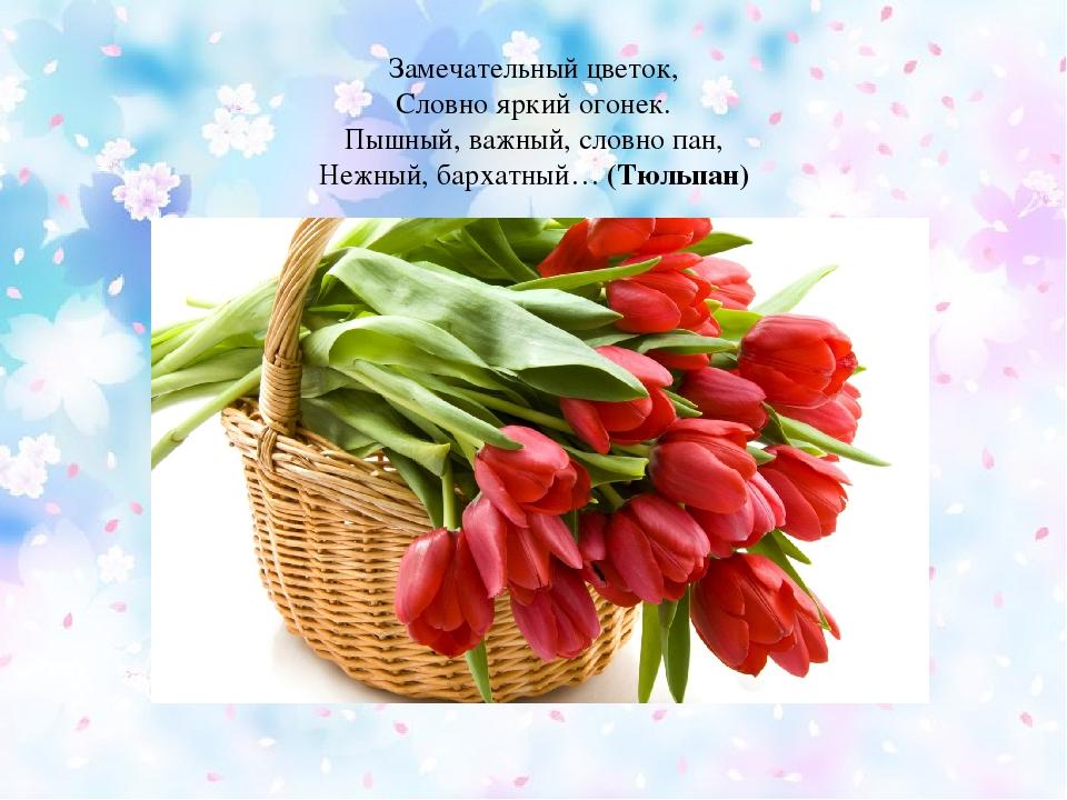 Замечательный цветок, Словно яркий огонек. Пышный, важный, словно пан, Нежны...