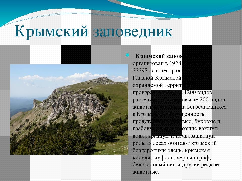 Доклад на тему крымские заповедники 9428