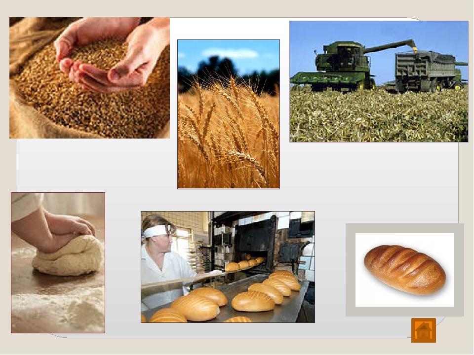 картинки о хлебе для малышей