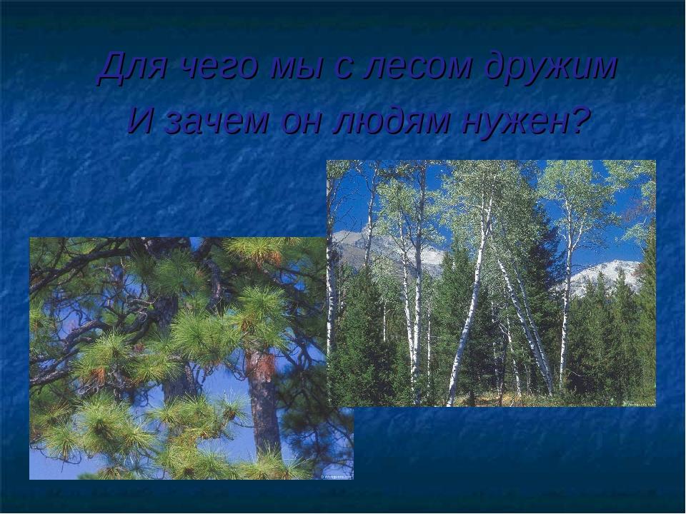 Для чего мы с лесом дружим И зачем он людям нужен?