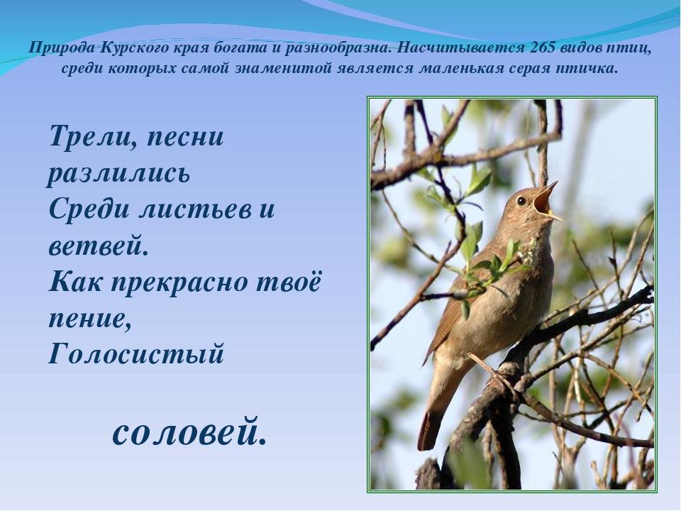 Стих курской области