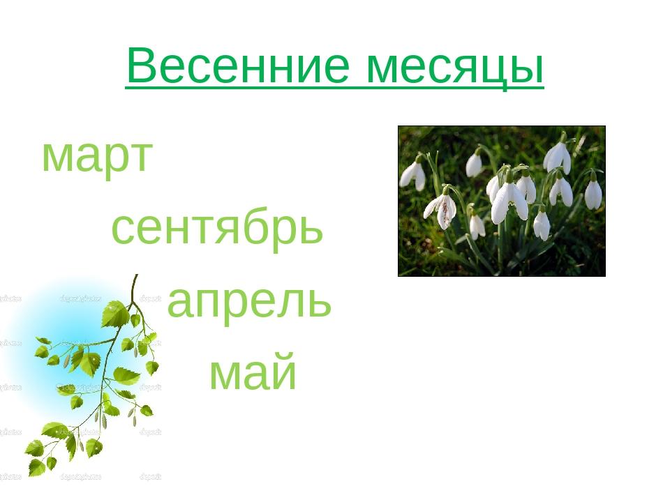 Весенние месяцы март сентябрь апрель май